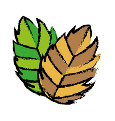 Leaves icon image vector