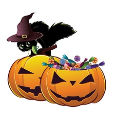 Halloween card with pumpkins and cat vector image
