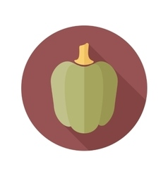 Pepper flat icon with long shadow vector