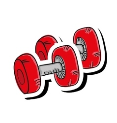 Dumbbell gym equipment vector