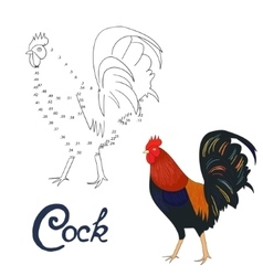 Educational game connect dots draw rooster bird vector