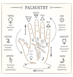 Palmistry mystical reading vector