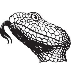 Acg00140 rattlesnake vector
