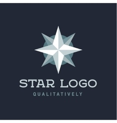Star polaris sharp white flat style lights twinkle vector