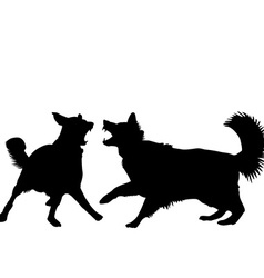 Dogs fight vector