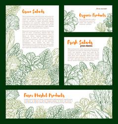 fresh farm salad vegetables sketch poster vector image vector image