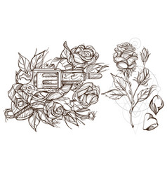 Roses and a gun a set of outline with sketches of vector