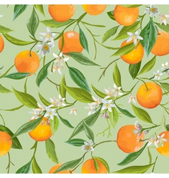 Seamless Pattern Orange Fruits Background vector image