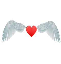 heart and white wings vector image