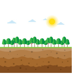 Soil profiles with trees vector