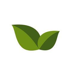 Green eco icon vector