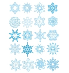 Collection of snowflakes vector image vector image