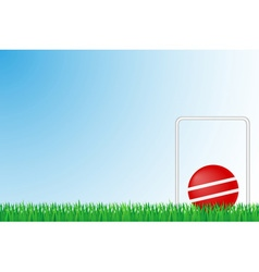 sports grass field 03 vector image vector image