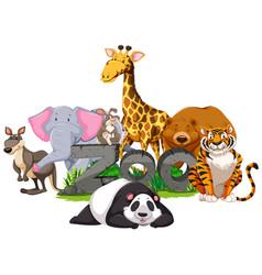 Wild animals around the zoo sign vector