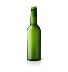 Blank green realistic beer bottle isolated on vector