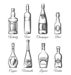 Alcohol bottles in hand drawn style vector image