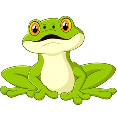 Cartoon cute frog vector image vector image