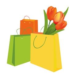 tulips in the shopping bag vector image