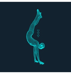 Gymnast man 3d model of man human body model vector