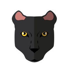Wild animal jaguar vector