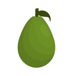 Avocado vegetable healthy icon vector