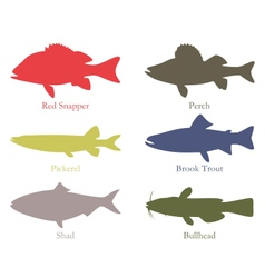 North american food fish vector