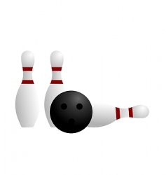 ball and pin of bowling vector image