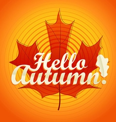 Hello autumn logo color maple leaf vector