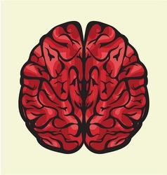 Mozak odozgoCOLOR vector image