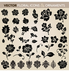 vector floral ornaments and icons vector image