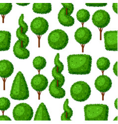 Boxwood topiary garden plants seamless pattern vector