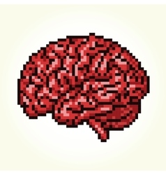 Pixel art brain isolated vector