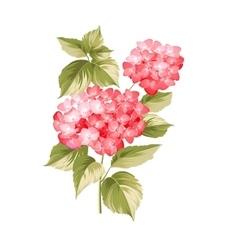 The Hortensia flower vector image