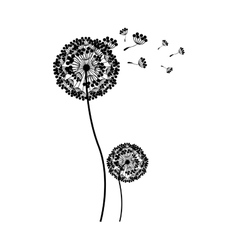 silhouette couple dandelion and fly petals vector image