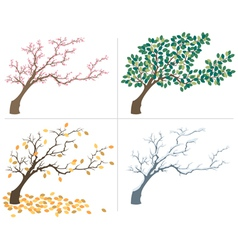 Seasons vector