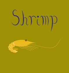 Flat on background sea shrimp vector