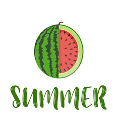 summer word with fruit watermelon vector image