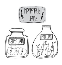 Apples and pears jams vector image
