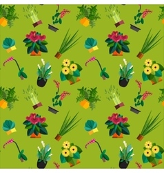 Seamless pattern of houseplants indoor and office vector