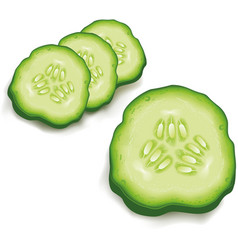 cucumber slice isolated on white vector image