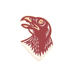 Hawk falcon bird head vector