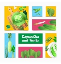 Organic vegetables herbs colorful headers poster vector