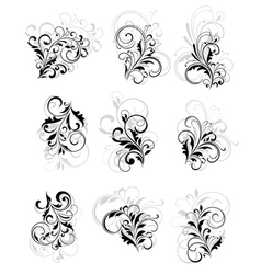 Flourish elements vector