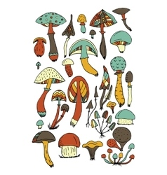 Art mushrooms set sketch for your design vector image vector image