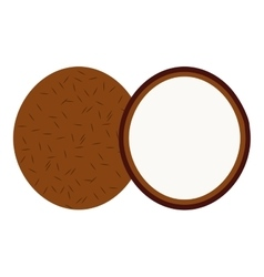 Coconut tropical fruit isolated icon vector