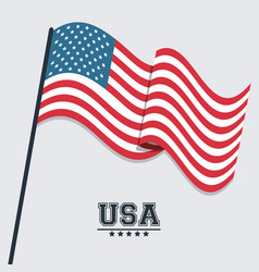 usa flag waving symbol celebraton patriotism vector image