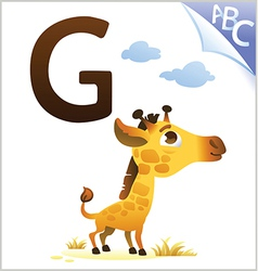Animal alphabet for the kids G for the Giraffe vector image