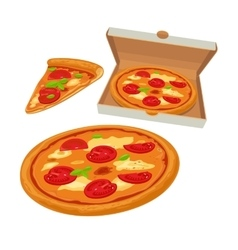 Whole pizza margherita in open white box and slice vector