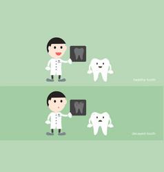 Tooth cartoon male dentist hold dental x-ray film vector