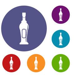 Alcohol bottle icons set vector